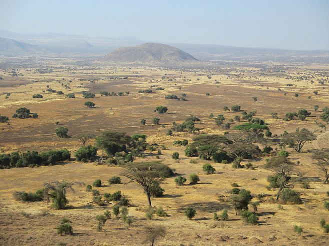 The vast landscape of Tanzania